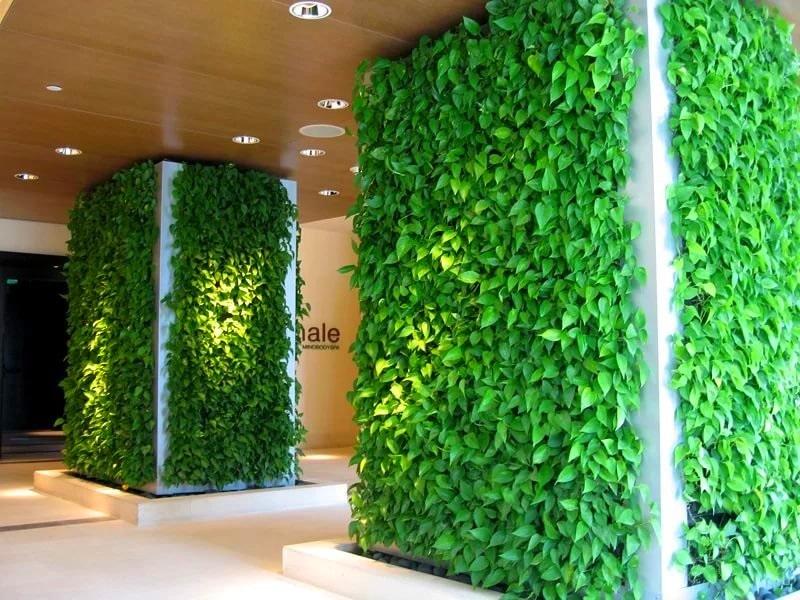 Вертикальное озеленение бизнес-центра