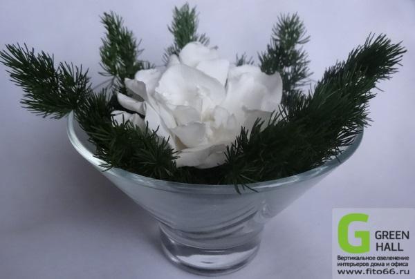 Композиция из белой стабилизированной розы