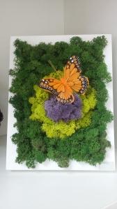 Мини картина из мха (три цвета)