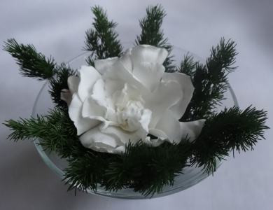 Цветочная композиция с одним белым цветком